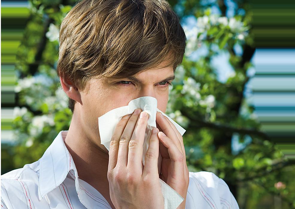 humer-alergija